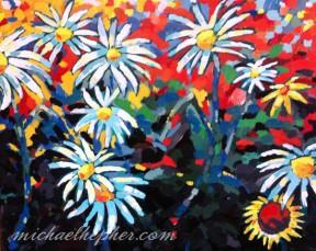 daisies-20x16-550px
